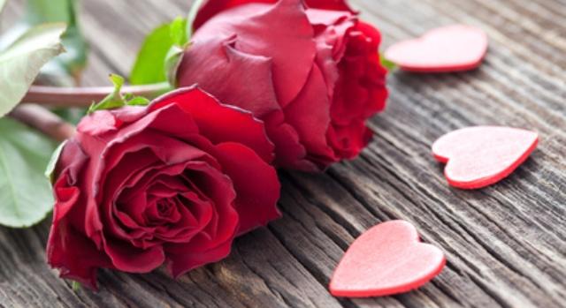 Wenn sich der Narzisst wieder meldet und eine Rose in der Hand hält